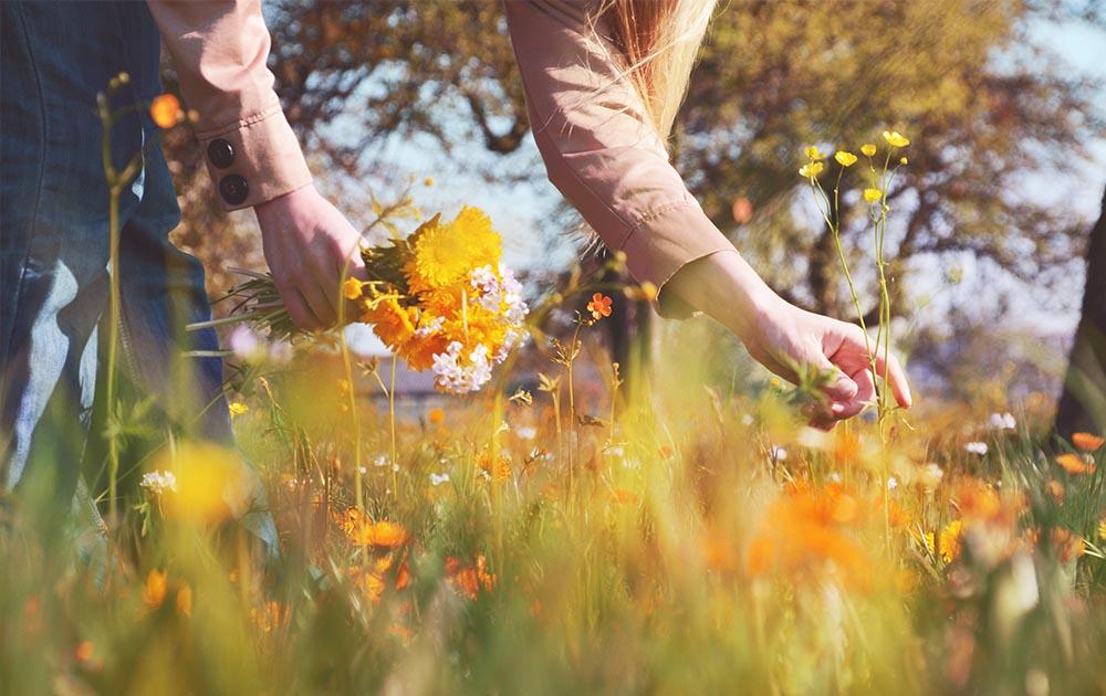 schmidundmorgen Beratung Wettbewerbsvorteil Frau pflückt Blumen auf Wiese